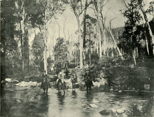 "'Crossing the River, Near Buffalo Falls', 1901. Buffalo River flows through Mount Buffalo National Park in the Victorian Alps, Australia. From ""Federated Australia"". [The Werner Company, London, 1901]"