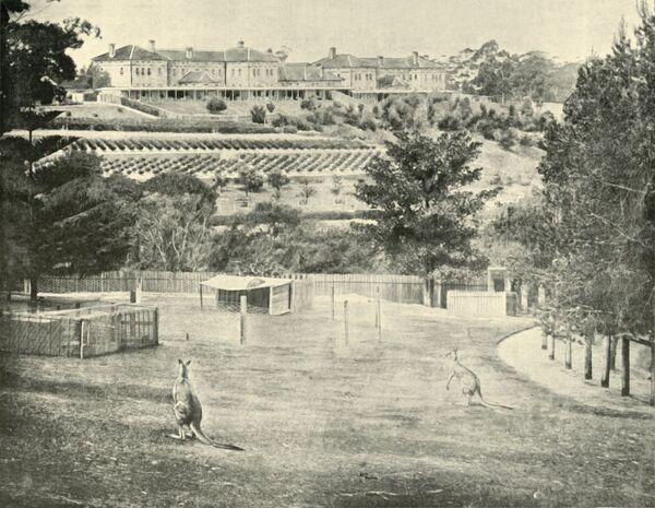 "'Gladesville Asylum for the Insane, New South Wales', 1901. Gladesville Mental Hospital, a psychiatric hospital established in the suburb of Gladesville, New South Wales in 1838, officially closed in 1993. From ""Federated Australia"""
