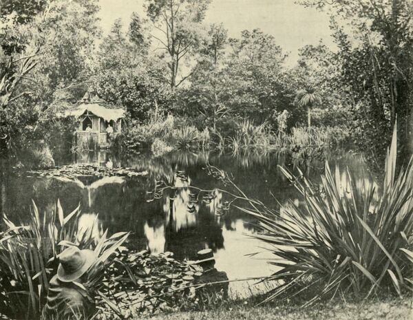 "'Mr. Ryan's Gardens, Mount Macedon, Victoria', 1901. Gardens at Derriweit Heights, the first homestead at Mount Macedon designed by Von Mueller and Guilfoyle and built by Charles Ryan, c1874. From ""Federated Australia&quot"