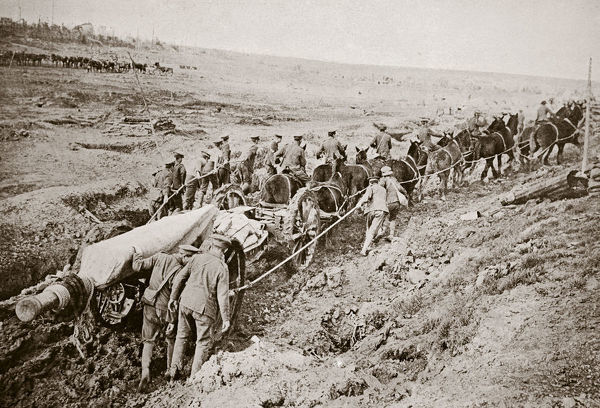 Pulling a big gun with a twelve horse team and the help of the gun crew, France, World War I, 1916. During the Battle of the Somme
