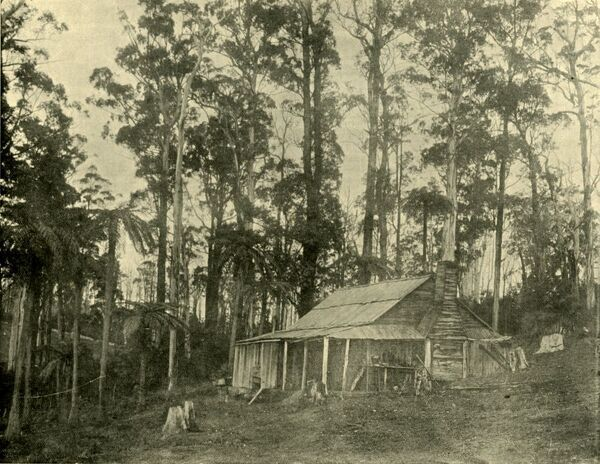 "'A Rustic Dwelling', 1901. From ""Federated Australia"". [The Werner Company, London, 1901]"