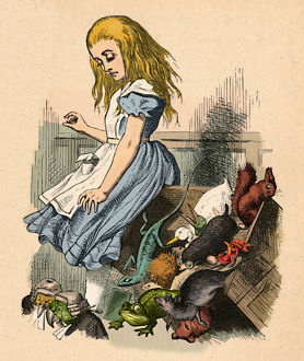 alice wonderland/alice animals chaos court 1889 artist john